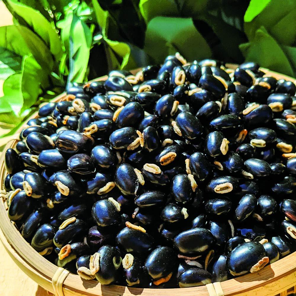 天然そのまま黒ムクナ豆(八升豆) 生ムクナ豆(300g入)