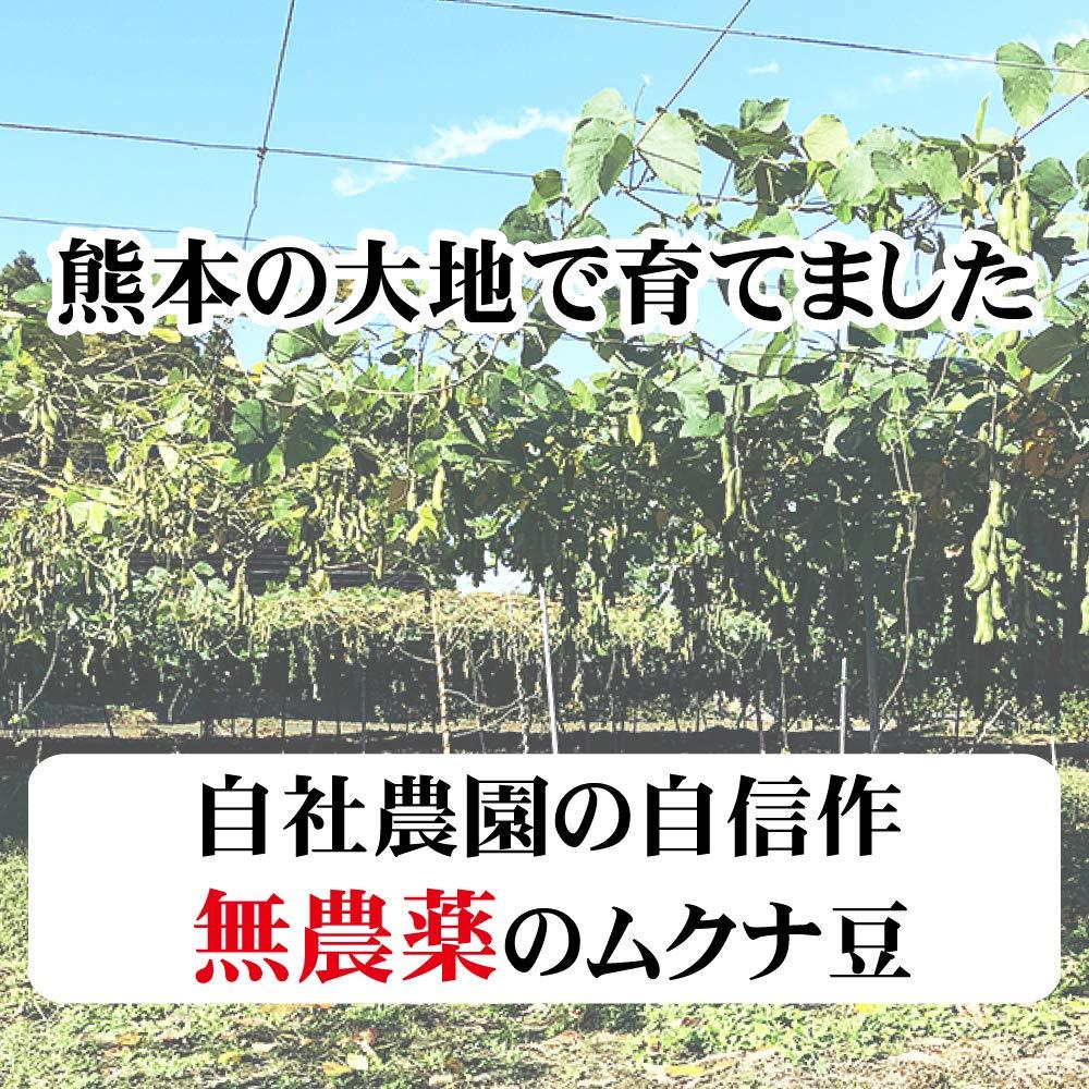 【定期購入特典付】ムクナ豆(八升豆) 錠剤(250mg×180粒、45g入)(定期購入12ヵ月分 90g入)