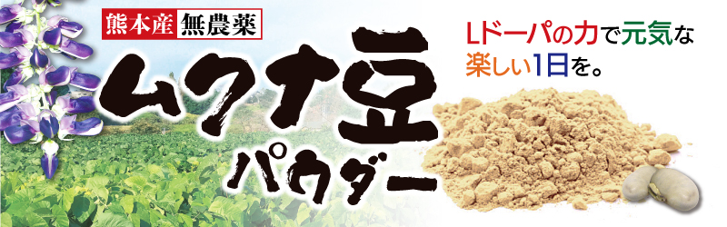 ムクナ豆(八升豆) パウダー