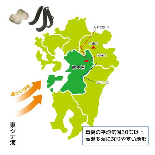 八升豆本舗は熊本産・無農薬にこだわり提供しています!